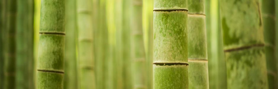 Bambumets�