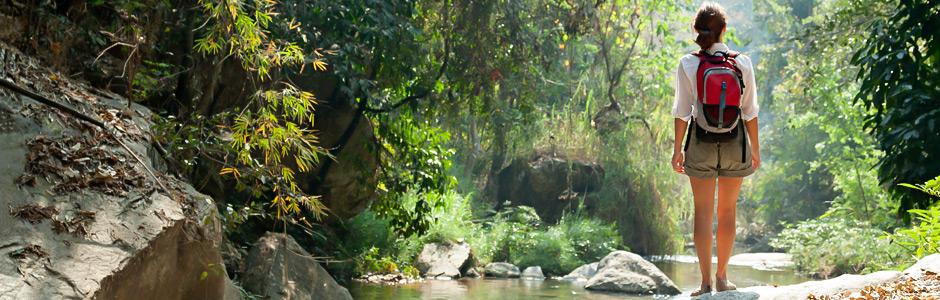 Patikoija Thaimaan viidakossa