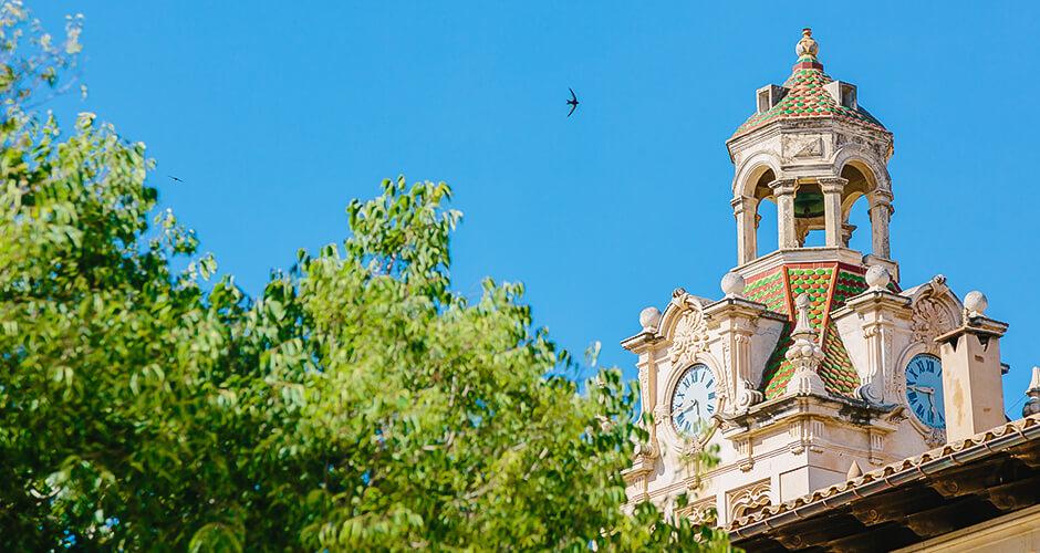 Alcudia, Mallorca 14