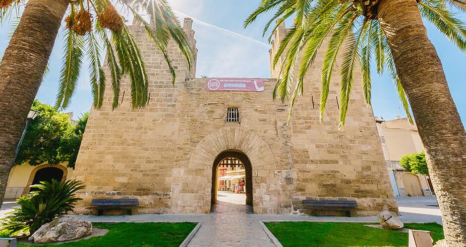 Alcudia, Mallorca 6