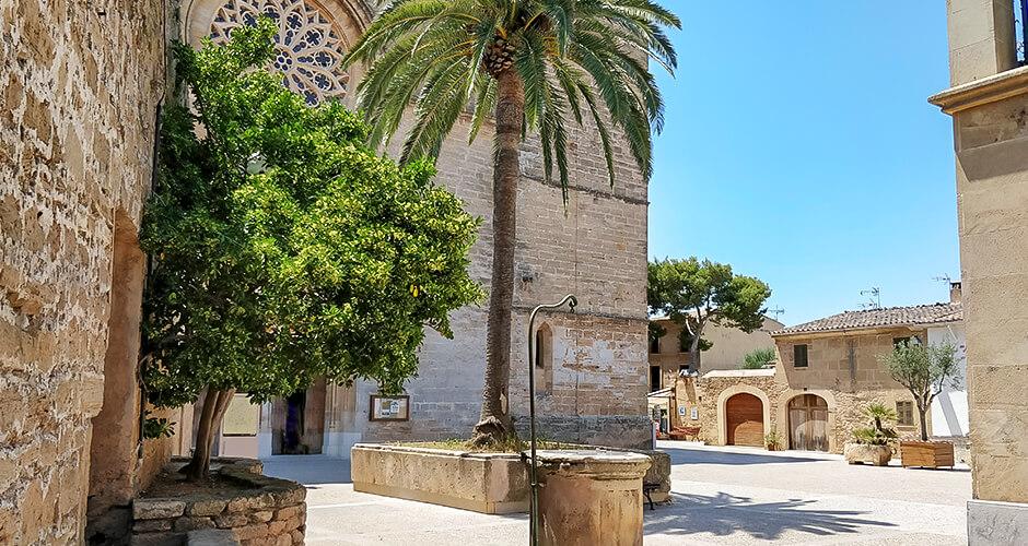 Alcudia, Mallorca 7