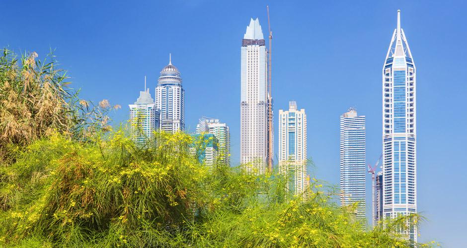 Dubai 23