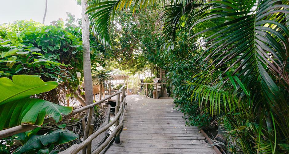 Eilat 6 - Kuva Dafna Tal, Israelin turistiministeriö