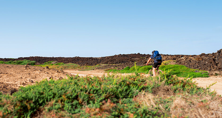 Caleta de Fuste, Fuerteventura 9