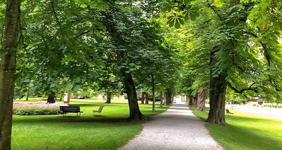 Innsbruck 11