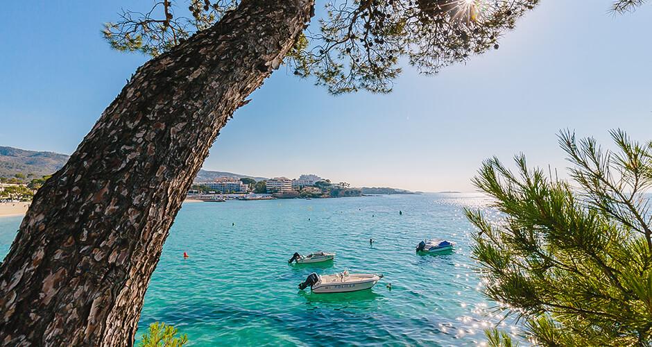 Palma Nova, Mallorca  8