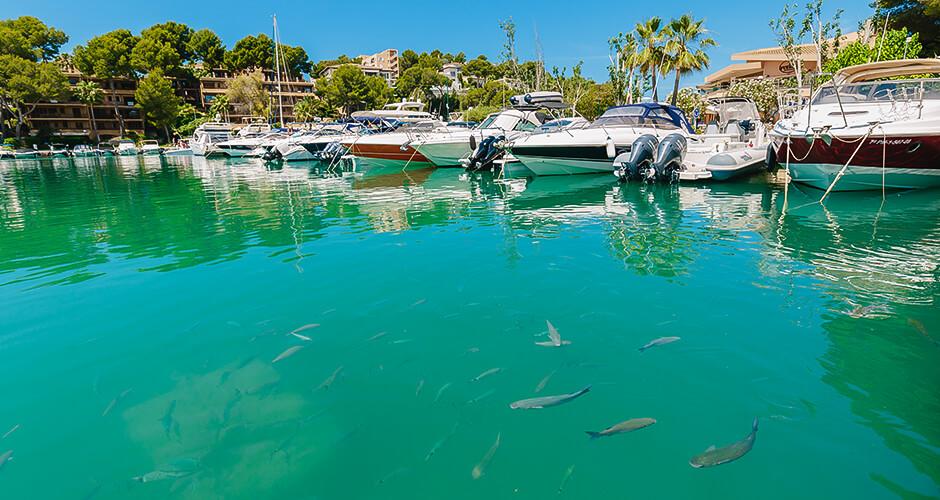 Santa Ponsa, Mallorca 8