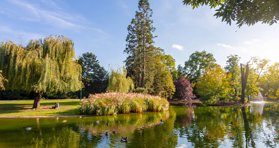 Wien, Lento+hotelli 13
